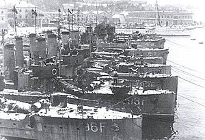 Royal Yugoslav Navy - Image: Austro Hungarian torpedo boat flotilla