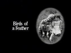 Birds of a Feather title card.jpg
