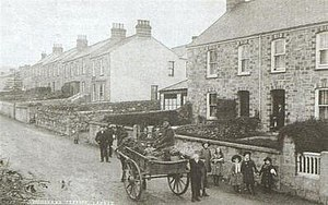 Lanner, Cornwall - A historic photo of Brays Terrace and Woodland Terrace