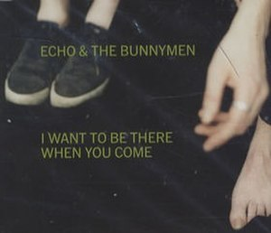 I Want to Be There (When You Come) - Image: Bunnymen iwanttobethere 1