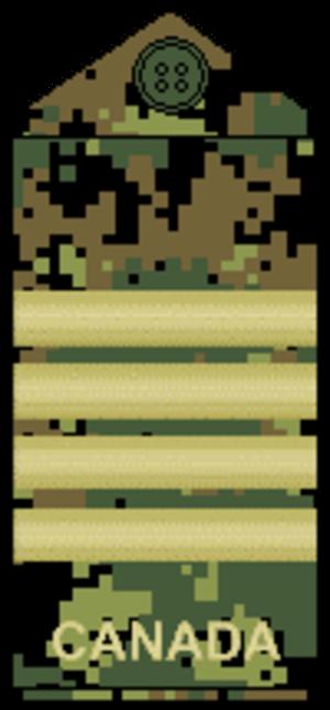 Colonel (Canada) - Image: CADPAT temperate Col
