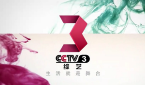 CCTV-3 - CCTV-3 Screenshot