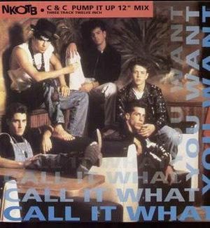 Call It What You Want (New Kids on the Block song) - Image: Call It What You Want Cover