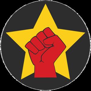 Revolutionary Socialists (Egypt) - Image: Egypt Revolutionary Socialists