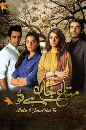 Mata-e-Jaan Hai Tu - Mata-e-Jaan Hai Tu title screen