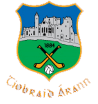 2010 All-Ireland Senior Hurling Championship Final - Image: TIPP GAA CREST