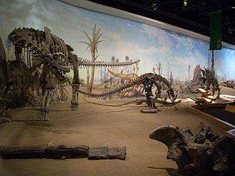 Provincial historic sites of Alberta - Some of the displays inside the Royal Tyrrell Museum