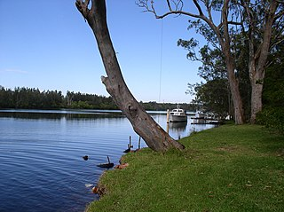 Dora Creek, New South Wales Suburb of City of Lake Macquarie, New South Wales, Australia