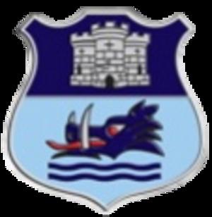 Dudley Kingswinford - Image: Dudley kingsw logo