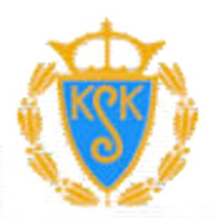Kungsgårdens SK - Image: Kungsgårdens SK