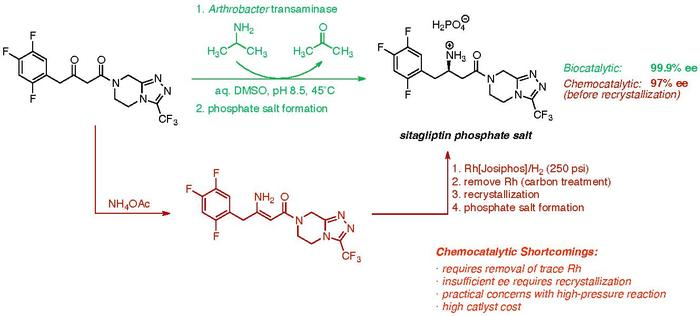 Comparison of the chemosynthetic and biosynthetic routes toward sitagliptin.