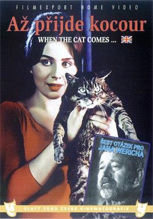 The Cassandra Cat - Image: Az prijde kocour dvd LRG