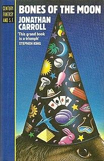 novel by Jonathan Carroll