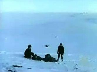 Porcupine (album) - Image: Bunnymen cutter vid