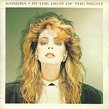 In the Heat of the Night (Sandra single) cover art.jpg