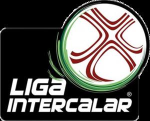 Liga Intercalar - Image: Liga Intercalar logo