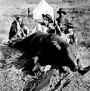 Black Hills Expedition - The bear Custer shot and later said to be his greatest hunting achievement