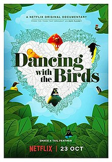 Dancing with the Birds poster.jpg