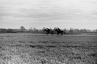 Denton, County Durham - Image: Dl 23tx denton horses 1990