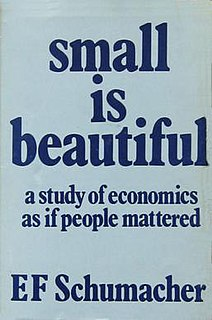<i>Small Is Beautiful</i> book by Ernst Friedrich Schumacher