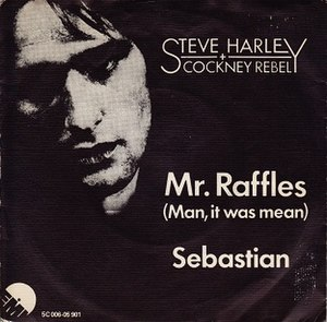 Mr. Raffles (Man, It Was Mean) - Image: Steve Harley Mr Raffles (Man It Was Mean) 1975 Single Cover