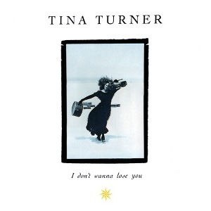 I Don't Wanna Lose You - Image: Tina Turner I Don't Wanna Lose You