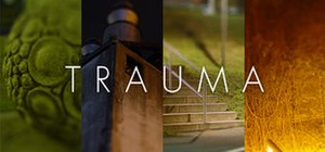Trauma (video game) - Image: Trauma video game cover