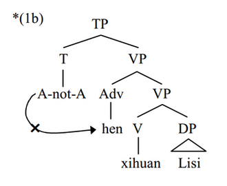 A-not-A question - Ungrammatical A-not-A operator lowering to adjacent MWd hen. Even though hen is the closest adjacent MWd, it is not an X'-theoretical head, thus lowering to it violates A-not-A lowering conditions
