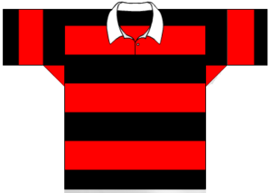 Wests Panthers - Image: Wests Panthers traditional jersesy