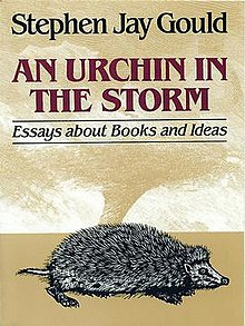 An Urchin in the Storm.jpg