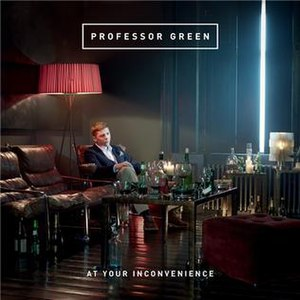 At Your Inconvenience - Image: At Your Inconvenincepic