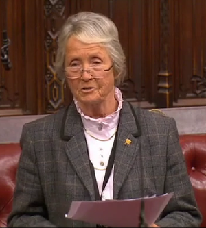 Rachael Heyhoe Flint, Baroness Heyhoe Flint - In the House of Lords in 2015