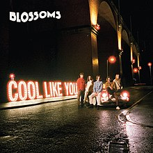 220px-Blossoms_-_Cool_Like_You_cover_art