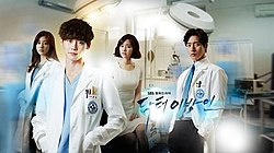 Doctor Stranger - Wikipedia