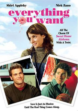 Everything You Want (film) - Movie poster