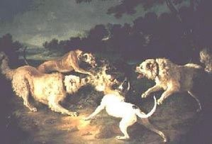 Wolf hunting with dogs - Wolf hunt by Jean-Baptiste Oudry, portraying a wolf attacked by sighthounds and molossers