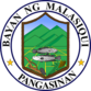 Official seal of Malasiqui