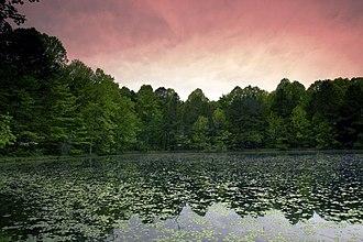 Charles C. Deam Wilderness Area - Image: Terrel Pond Sunset Charles C Deam Steve Skinner