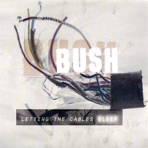 Letting the Cables Sleep - Image: Bush letting the cables sleep
