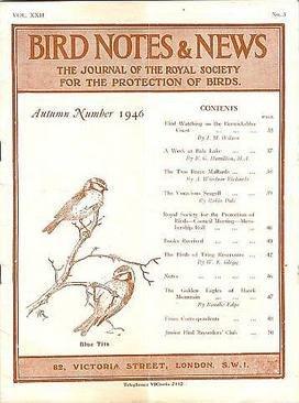BirdNotes-22-3