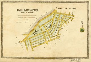 Municipality of Darlington Local government area in New South Wales, Australia