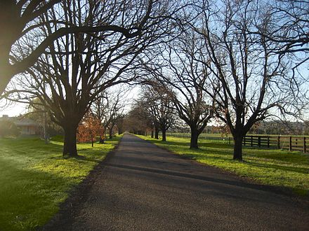 King George Avenue near the Peel River where many farms are located Kinggeorgeavenuetamworth.jpg