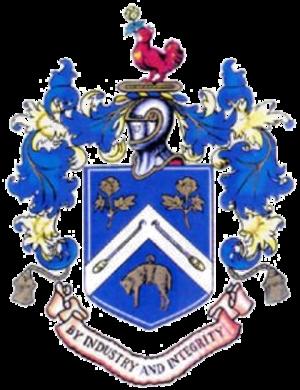Nelson F.C. - Image: Nelson FC Logo