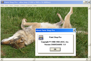 PaintShop Pro - Paint Shop Pro 1.0 (pictured here running on Windows XP), was released in 1992 for Windows 3.1.