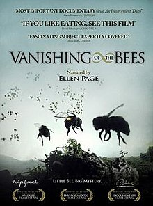 Movie poster for The Vanishing of the Bees