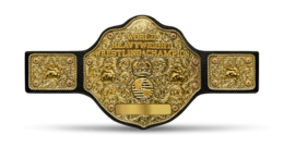 WCW World Championship.png