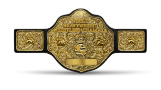 WCW World Heavyweight Championship Former championship created by World Championship Wrestling and promoted by the American professional wrestling promotion World Wrestling Federation