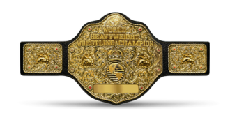 WCW World Heavyweight Championship - The Big Gold Belt represented the WCW World Heavyweight Championship in 1991 and then from 1994–2001