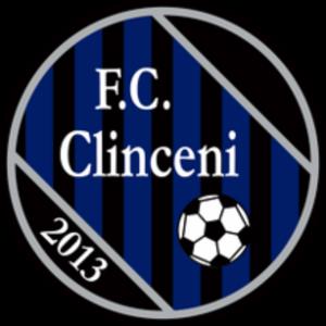 FC Academica Clinceni - Former logo.