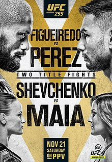 UFC 255: Figueiredo vs. Perez Fight Poster